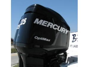 Mercury decals
