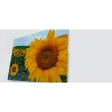 "Wall Glass Art Girasoles Siena 16"" x20"""